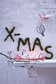 XMAS written on wall in moss as festive garden decoration