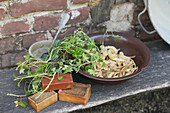 Wood ash, ivy leaves, potato peelings and curd soap for making traditional laundry detergents