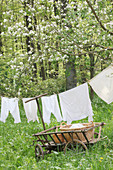Freshly washed, vintage-style laundry hung on washing line in garden