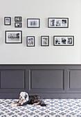 Hund auf Fliesenboden vor Sockelbereich mit Kassettenverkleidung, Fotogalerie an der Wand