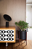 Black lamp on lowboard with black and white front next to plant stand