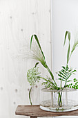 Airy arrangement of green leaves in glass vase