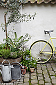 Yellow bicycle next to plants and watering cans in courtyard