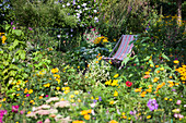 Deck Chair Between Flowers In The Cottage Garden