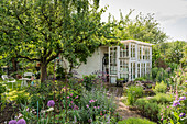Garden With Apple Tree And Greenhouse From Old Windows