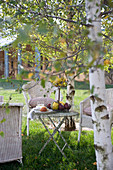 White wicker chairs in seating area on lawn amongst silver birches