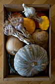 Butternut squash, muscat squash, pattypan squash and garlic in wooden crate