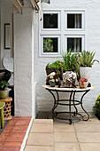Sammlung von Sukkulenten auf rundem Tisch in geschützter Ecke vor Veranda