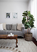 Scatter cushions on grey sofa, houseplant and wooden coffee table in living room