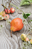 Tisch mit roter Williamsbirne, kleinen Äpfeln und Clematis