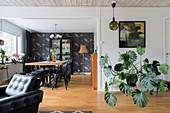 Große Zimmerpflanze vor weißer Wand in offenem Wohnraum, im Hintergrund Essbereich mit Blumentapete