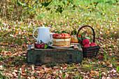 Apfelgelee-Kuchen im Herbstgarten
