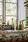 Collection of vintage bottles on window sill above plants on table