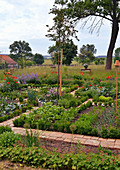 Farm Garden In Early Summer With Vegetables And Perennials