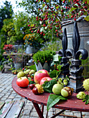 Autumn - Arrangement With Apples, Chestnuts And Walnuts