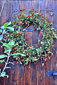 Late Summer - Door Wreath Of Branches With Rosehips
