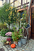 Autumn Arrangement With Chrysanthemum, Scented Geranium, Heather And Pumpkin