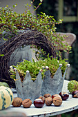 Zinc Crowns With Moss, Nuts And Chestnuts As Autumn Decoration