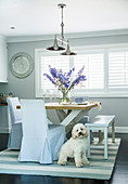 Dining table with wooden bench and slip chairs in front of window, dog on carpet