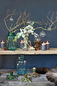 Arrangement of natural items in blue and green on wooden shelves on blue wall