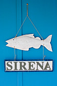 Sign and wooden fish hung on blue wall