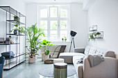 Pale grey sofa set, shelves and houseplant in living room of period apartment