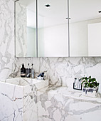 Mirror cabinet over sink and ledge in marble bathroom