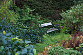 Vintage bench in romantic garden