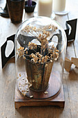 Dried flowers in beaker under glass cover