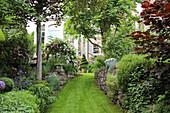 Lawn path between natural stone walls