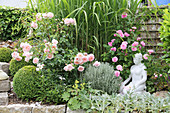 English roses 'Wild Eve' 'Gertrude Jekyll' with book and holy herb in front of Miscanthus