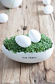 Cress and eggs in egg-shaped china pot