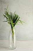 Palm leaves and bamboo stem in glass bottle