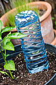 Watering system made from reused plastic bottle