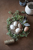 Speckled eggs on pewter plate in Easter nest decorated with feathers