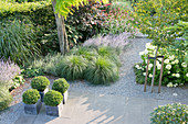 Terrace with concrete flags and shrubs and perennials lining gravel path leading through garden
