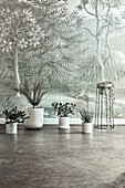 Houseplants in white planters on the floor in front of jungle-themed wallpaper