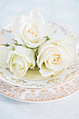 Arrangement of pastel roses on plate