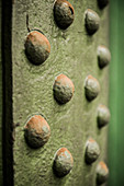 Rivets in green-painted metal