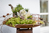 Autumn arrangement of moss, cherub, pine branches and larch branches in rusty dish