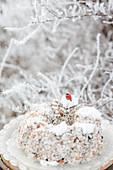 Bird feeding station in frosty garden