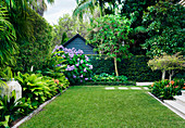 Large lawn and border planting in a well-kept garden