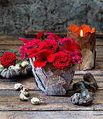 Red roses, Egyptian starcluster and rocktrumpet