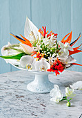 Moth orchids, peace lilies, Justicia and agapanthus