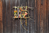 Imaginative, autumnal flower arrangement on barn door