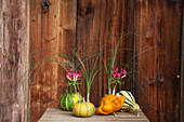 Ornamental squash used as vases for grasses and gloriosa lilies