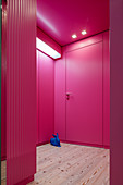 Blue hare on wooden floor in hallway with hot-pink walls and doors
