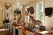 Mahogany table and blue leather chairs in dining room with assorted taxidermy specimens