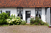 Wild front garden and courtyard outside country house with grey shutters