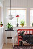 Cat sitting on red spoke-back bench and side table below windows